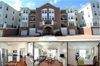 8606 WINTERGREEN CT #303, ODENTON, MD