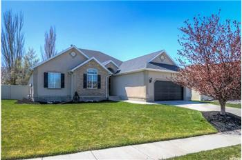 Primary listing photos for listing ID 564634