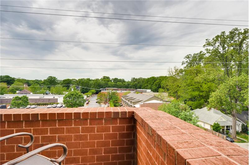 Lovely tree-top views of Dilworth, Charlotte's first street car suburb, replete with tree-lined streets, quaint bungalows.