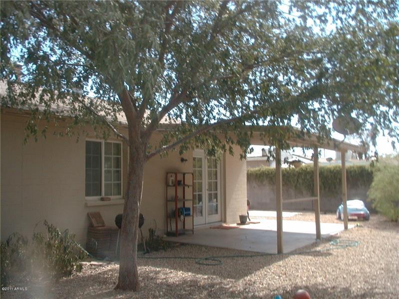 More back yard, easy care landscape