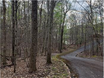 1516 Catoosa Drive, Mooresburg, TN