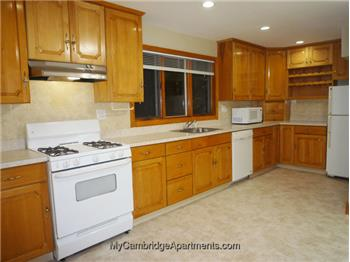 Primary listing photos for listing ID 591286