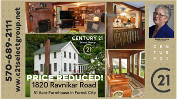 1820 Ravniker Rd, Forest City, PA