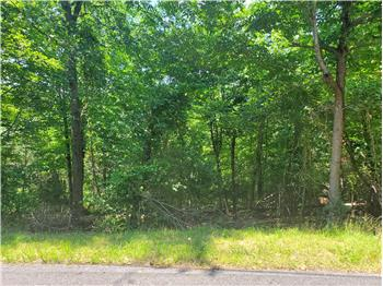 Primary listing photos for listing ID 571022