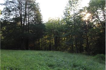 210 Sunset Ridge Drive, Farmville, VA