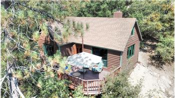 Treehouse Cabin in Idyllwild