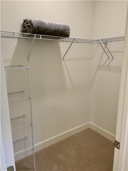 Main Level Bedroom Walk-In Closet