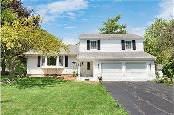Primary listing photos for listing ID 552120