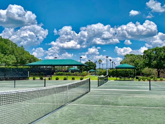 12 Har-Tru Tennis courts
