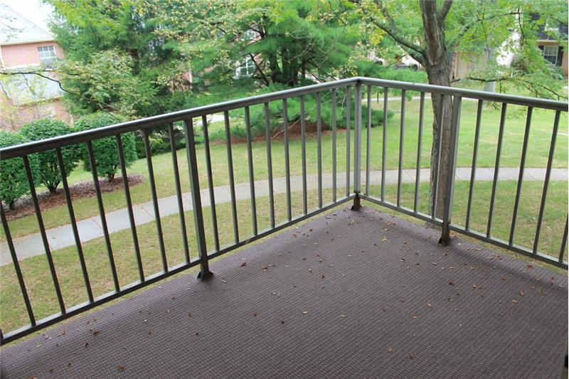 319 Old Forge Crossing Balcony