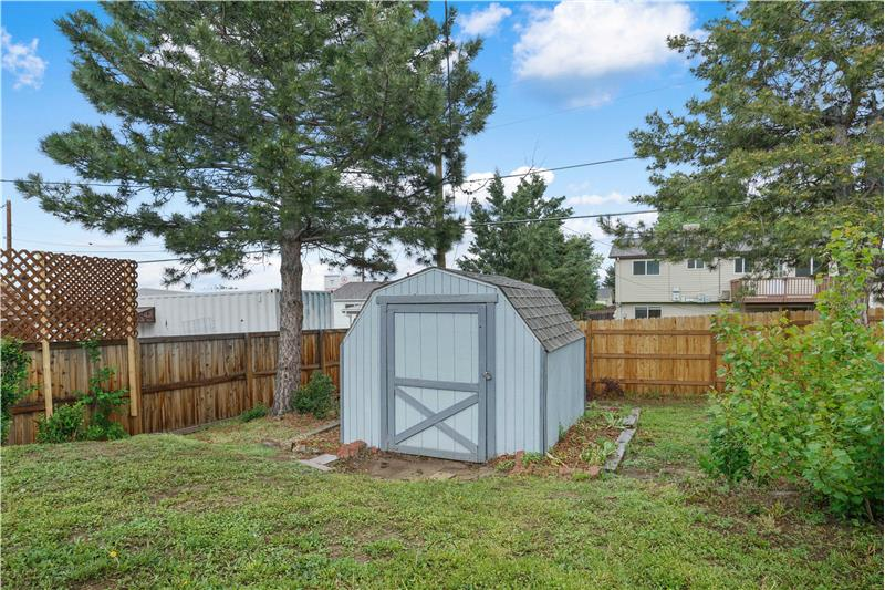 Large shed in backyard