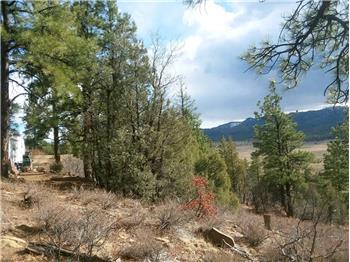 371 Cat Creek Overlook, Pagosa Springs, CO
