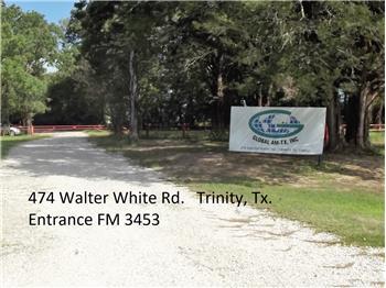 374 Walter White Rd, Trinity, TX
