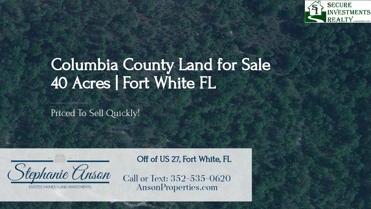 https://realbird.blob.core.windows.net/rb-photos/40-acres-for-sale-fort-white-fl-32038_D8A3N8N6_534097_636861577963751681_80x60.png