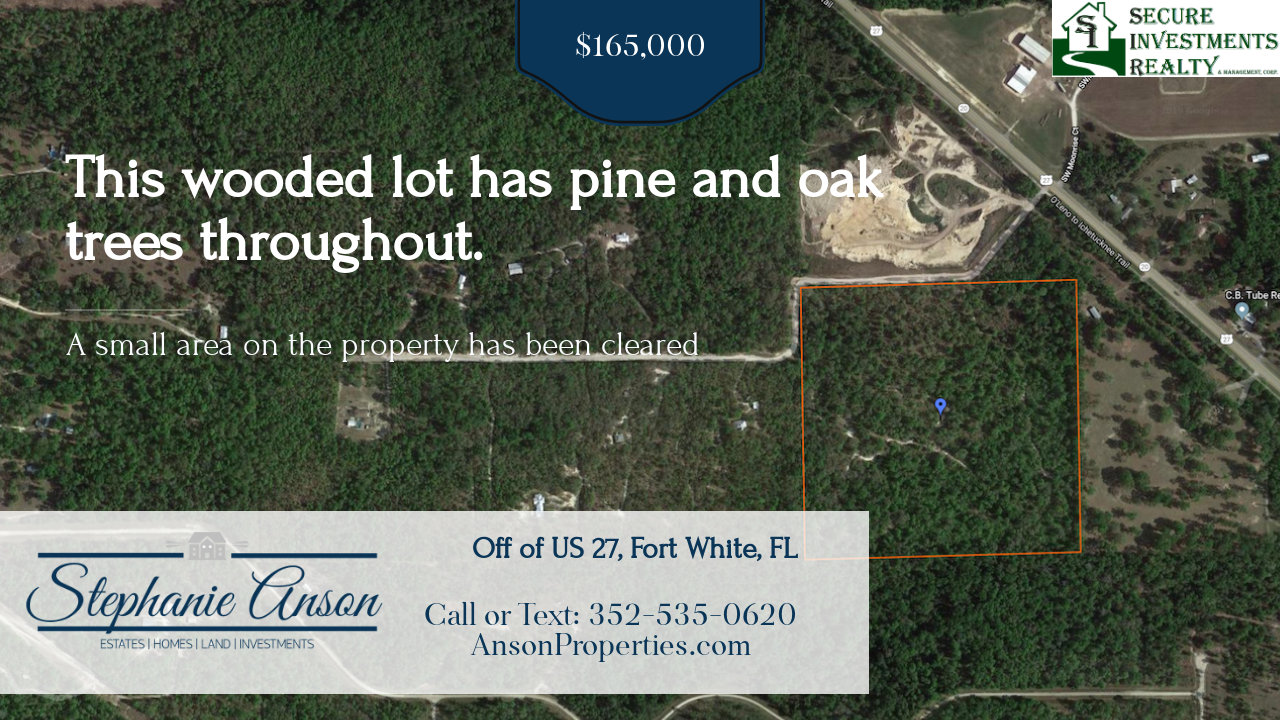 https://realbird.blob.core.windows.net/rb-photos/40-acres-for-sale-fort-white-fl-32038_D8A3N8N6_534097_636861578595783654_80x60.png