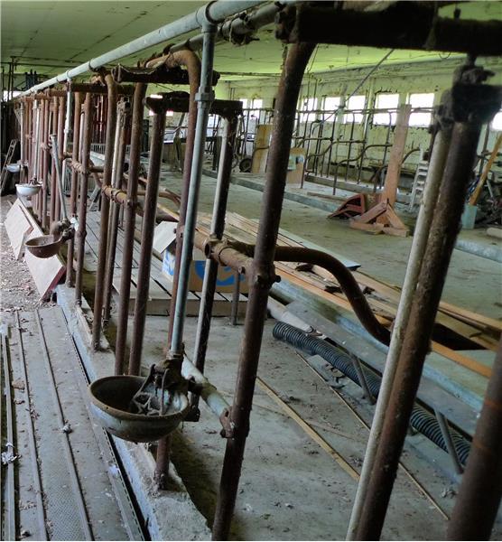 Closer look at milking parlor