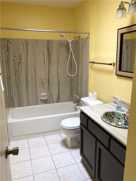 Guest Full Bath with Custom Sink
