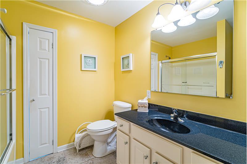 Hall Bath on Lower Level