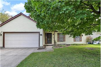 Primary listing photos for listing ID 546022