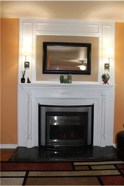 Gas Burning Insert with Thermostat