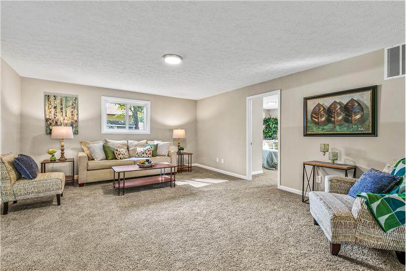 Huge Family room with carpet