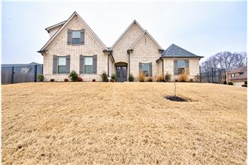 9035 Chrysalis Lane, Cordova, TN