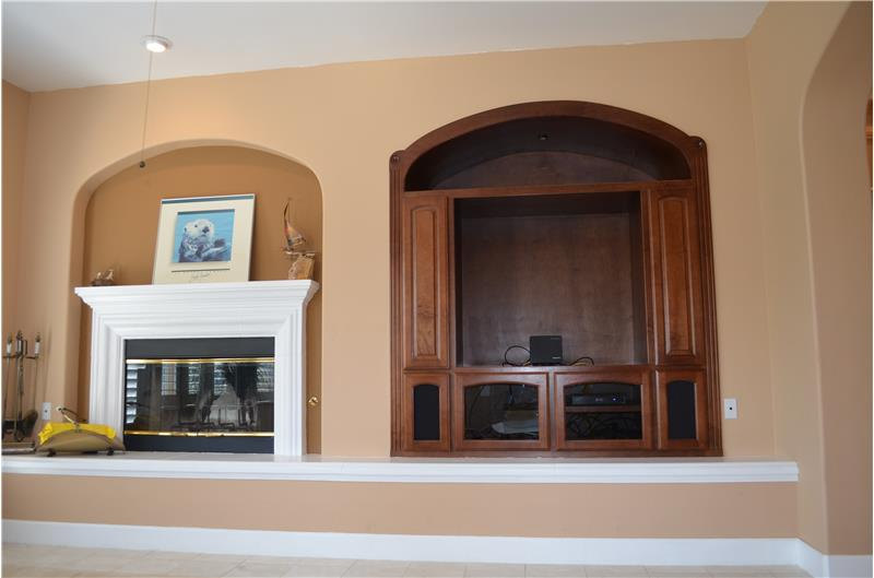 Fireplace and Media Niche