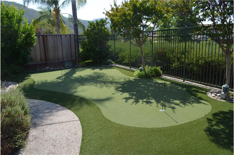 Artificial turf putting green in backyard