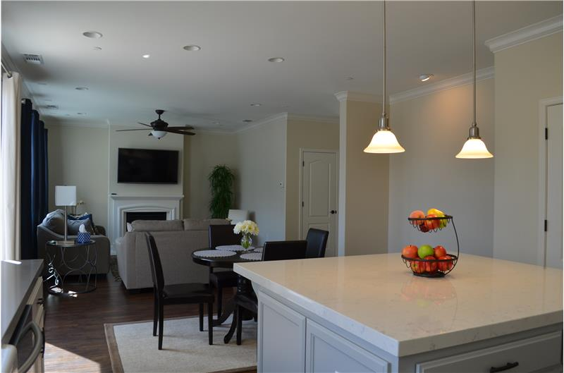 Family Room / Kitchen Combo