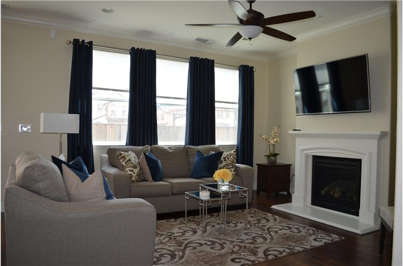 Fireplace in Family Room