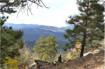 conifer rental backpage