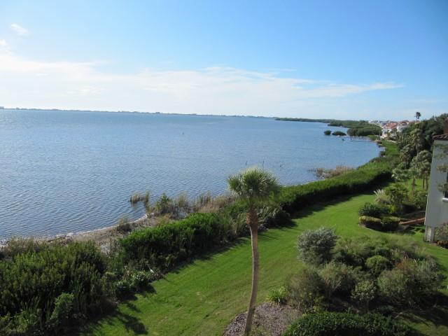 Bayfront View