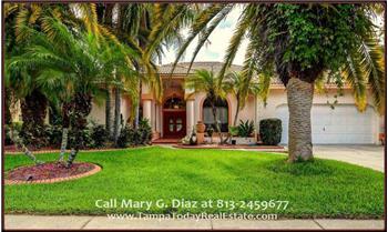 12905 Cinnimon Pl, Tampa, FL