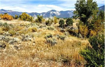 101  Highway 522, El Prado (Taos), NM