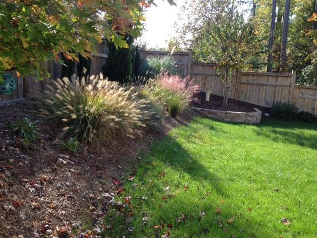 1601 Bellenden Drive, Durham, NC Yard in Fall