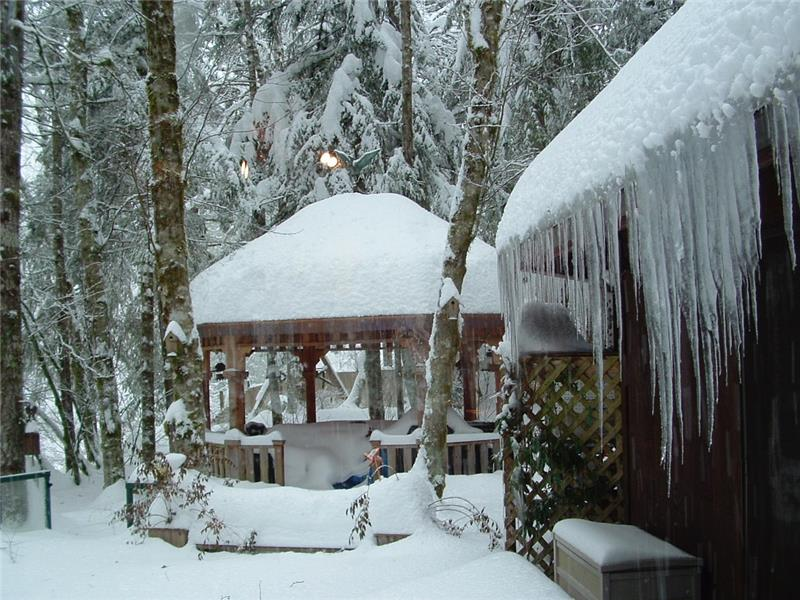 Garden Gazebo in Snow