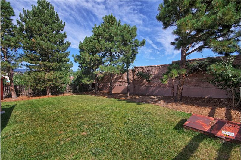 Backyard with mature landscaping