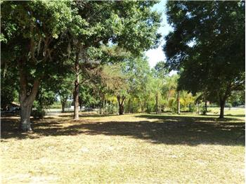 Honeycomb Lane, Auburndale, FL