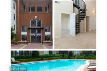 501 Hungerford Drive 366, Rockville, MD