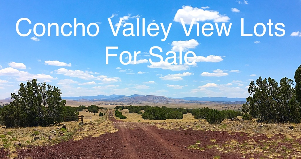 Multiple Lots Available