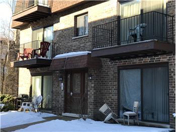 9622 Bianco Terrace E, Des Plaines, IL