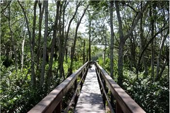 27109 SERRANO WAY, Bonita Springs, FL