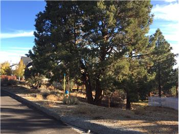 390 Pine Lane, Big Bear City, CA