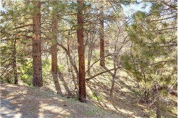 43614 Ridgecrest Drive, Big Bear Lake, CA