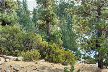 big bear lake rental backpage