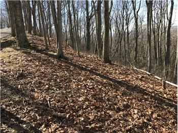 LOT 18 WILD WOOD RIDGE, The Retreat,, Caldwell, WV