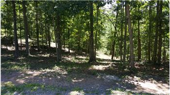Lot 46, Wildwood Ridge, The Retreat, Caldwell, WV