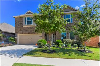 541 Saddle Back Trail, Cibolo, TX