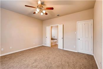 cibolo rental backpage