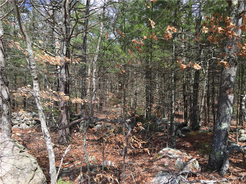4 acres of land to buil on